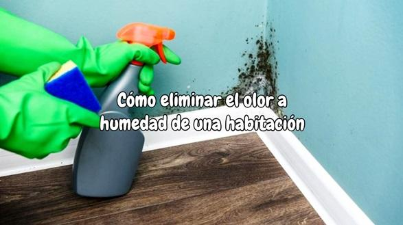 Cómo eliminar el olor a humedad de una habitación