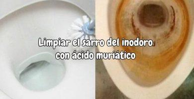 Cómo limpiar el sarro del inodoro con ácido muriático