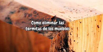 Como eliminar las termitas de los muebles
