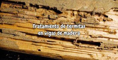 Tratamiento de termitas en vigas de madera